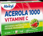 Acheter Govital Acerola 1000 à LA GARDE
